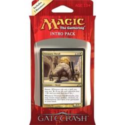 Magic the Gathering Intro Pack Gatecrash